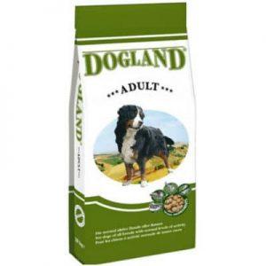 dogland-adult