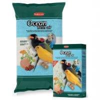 Ocean fresh air