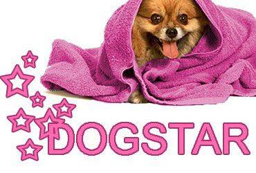 Проклятие любой породы это хороший фильм снятый про собаку этой породы !